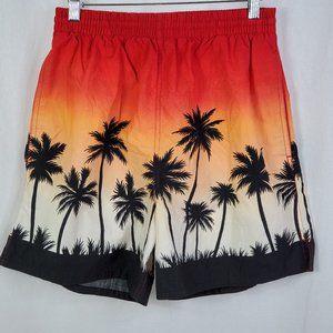 Chaps Ralph Lauren Swim Shorts Trunks